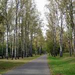 Soviet Army Park | Parks and Public Gardens | Vitebsk - Attractions